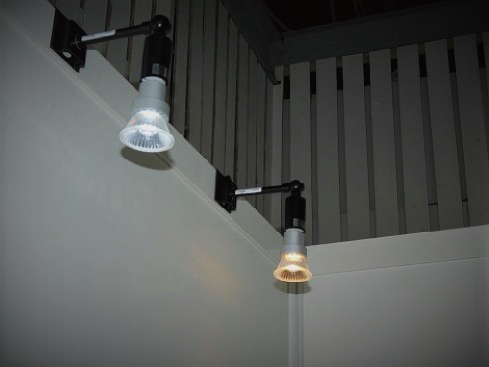 LEDスポット(灯体黒) 昼光色・電球色